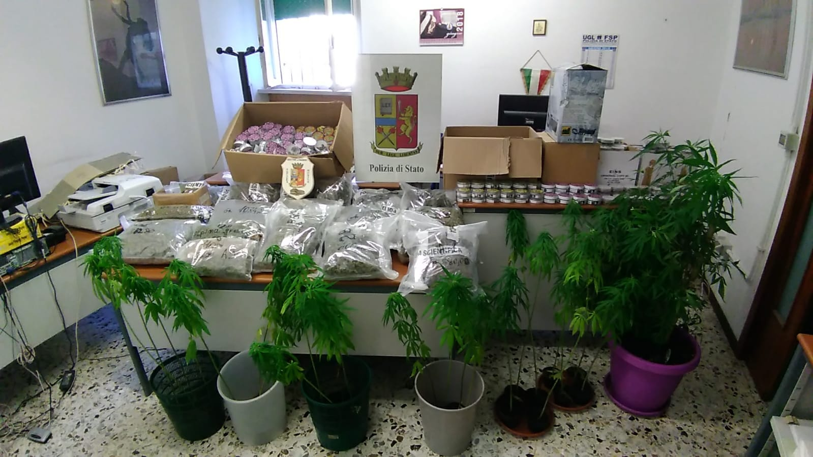 Operazione cannabis light shop