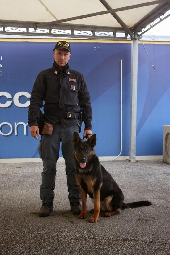 http://questure.poliziadistato.it/statics/14/marrone-con-savana-sito1.jpg?art=1