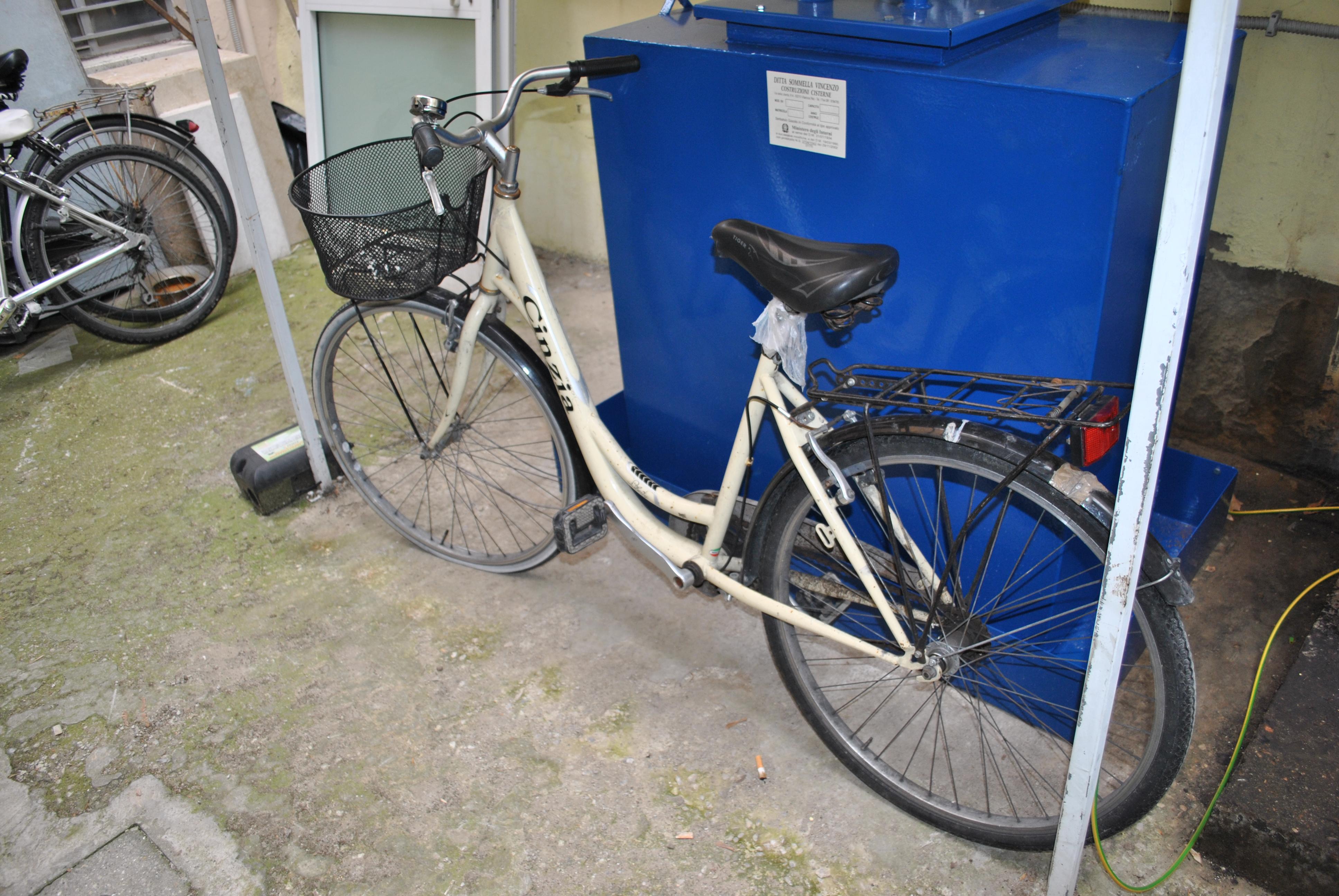 Le Volanti della Questura di Rimini hanno rinvenuto sei biciclette ...